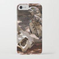 hawk iPhone & iPod Cases featuring Hawk by Veronika
