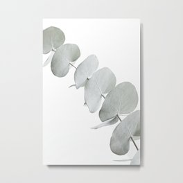 EUCALYPTUS WHITE 3 Metal Print