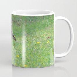 Northern Flicker & Dandelions Coffee Mug