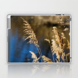 Reeds in Camargue Laptop & iPad Skin