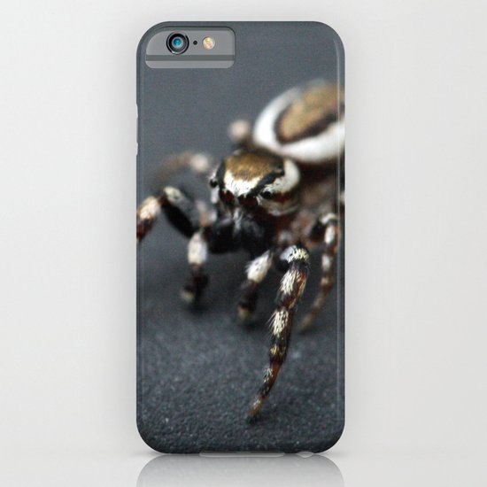 Jumping Spider iPhone & iPod Case