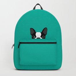 Boston Terrier Peek - Black on Teal Backpack