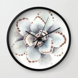 Kalanchoe Tomentosa  Wall Clock