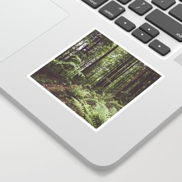 Woodland - Landscape and Nature Photography Sticker