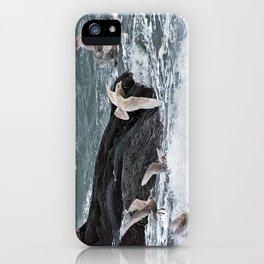 Gulls shop for Dinner iPhone Case