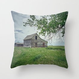 Standing On Memory Alone (in colour) Throw Pillow