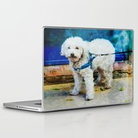 caleb troy Laptop & iPad Skins featuring The Adventures Of Troy I by Louisa Catharine Photography And Art