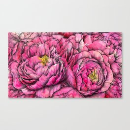 Peonies three pink Canvas Print