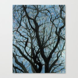 BETWEEN BRANCHES Canvas Print