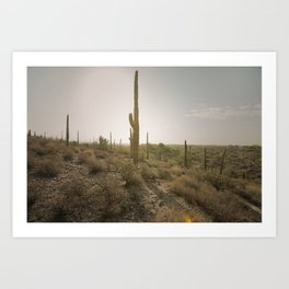Arizona Sunrise Art Print
