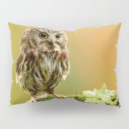 Extremely Cute Adorable Little Young Owl Big Eyes Close Up Ultra HD Pillow Sham