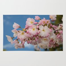 Cherry Blossoms (Edit 2) Rug