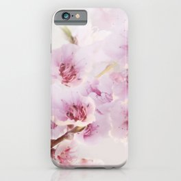 Blossoms greet spring iPhone Case
