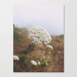 Flower in Fog Canvas Print
