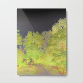 """""""Painted"""" Path Metal Print"""