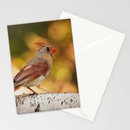 Female Northern Red Cardinal Stationery Cards