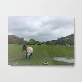 Horse In A Field Metal Print