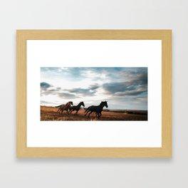horseplay  Framed Art Print