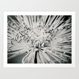Dream In Black And White Art Print