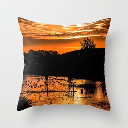 Silhouetted Canadian Geese taking a break in a pond in Ann Arbor, Michigan Throw Pillow