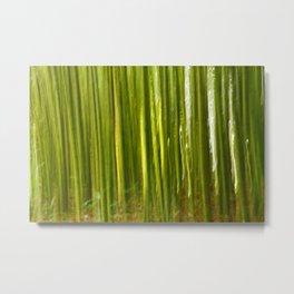 Nature bamboo abstract Metal Print