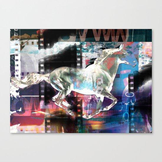 horse 02 Canvas Print