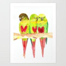 Green cheeked love Art Print