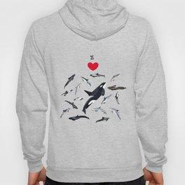 I love dolphins Hoody