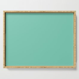 Solid Pale Blue Green Color Serving Tray