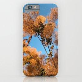 Flowering Smoketree/Smoke Bush iPhone Case