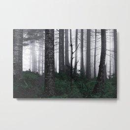 Misty Mountain Woods Metal Print