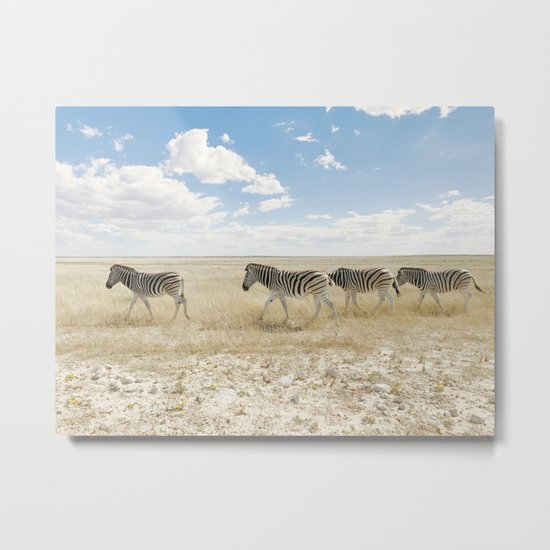 Zebra on African Savannah Metal Print