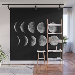 Phases (black) Wall Mural