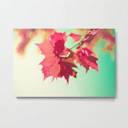 Autumn Maple Leafs Metal Print