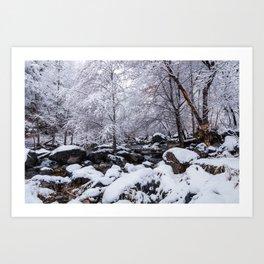 Oak Creek on a Snowy Day Art Print