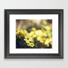 My Sweet Buttercup Framed Art Print