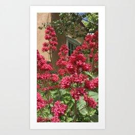 Santa Fe Flowers Art Print