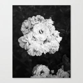 CLIMBING ROSE Canvas Print