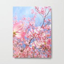 Pink Flowers Blue Sky Metal Print