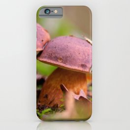 Porcini mushrooms in a double pack iPhone Case