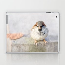 Don't Mess With Sparrows Laptop & iPad Skin