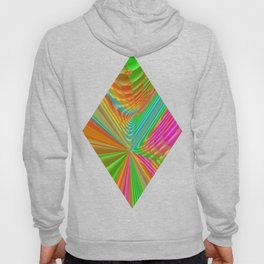 Abstract 359 a dynamic fractal Hoody