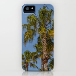 Palm Trees on Laguna Beach in California iPhone Case