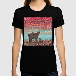 brown bears and stars T-shirt