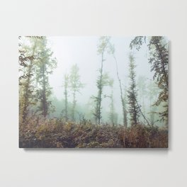 deep in the misty forrests Metal Print