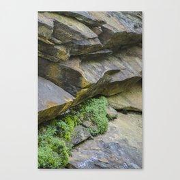 Slate and Moss Canvas Print