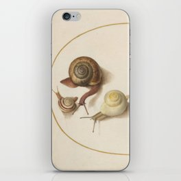Naturalist Snails iPhone Skin