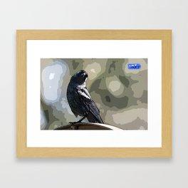 Quizzical Jackdaw #Bird #Jackdaw #Digitalart Framed Art Print