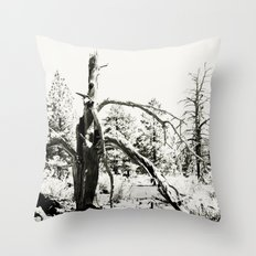 Volcanic Aftermath Throw Pillow