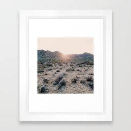 Sunset in Joshua Tree National Park Framed Art Print